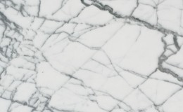 10 Marble Bianco Venatino
