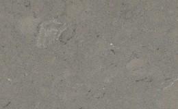 Fossil Gray Quartz